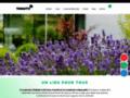 Détails : Toniutti - Promoteur immobilier à Colmar