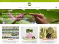 Détails : Le meilleur blog de santé naturelle