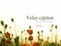 site http://www.velay-capiton-articles-funeraires.com