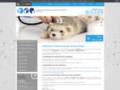 Vaccin chien Saint-Saulve