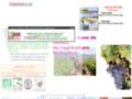 Détails : Vins BIO de France