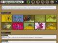 Site #4745 : MacroNature - La nature en photo