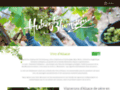 Détails : Vins Blumstein - Cave à vins - Chatenois