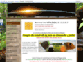 Détails : Vitalideal : vente en ligne de compléments alimentaires