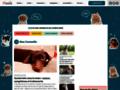 croquettes chien sur wamiz.com