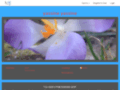 Détails : Weebox site d'actualité web