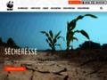 Détails : WWF