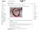 Site ornithologie