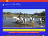 Ange Blanc élevage de chevaux Camargue