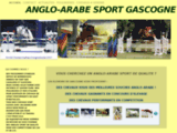 Anglo-arabe sport Gascogne