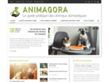 animagora.fr