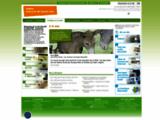animaux de ferme.com - Primaires