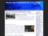 aquarium-rochelle.images-en-france.fr