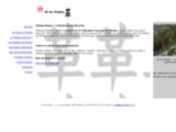 art-du-shiatsu.com