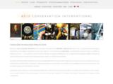 artsconservationinternational.com