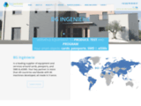bginge.com