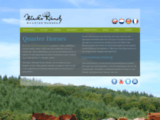 Blacks Ranch - Ecurie & �levage de QH