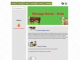 Elevage bovin ovin au Maroc