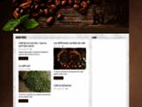 cafegrain-torrefacteur.com