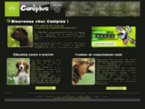 Caniplus