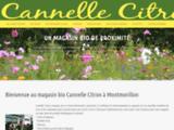 Cannelle Citron
