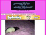 Carole et le monde des rats