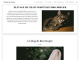 Chatterie de Bro Dreger