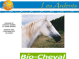 cheval-barbe.org