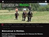 chevalauvergne.com