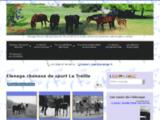 chevaux-de-sport-la-treille.com