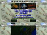 cichlide38.free.fr