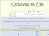 cobayesetcie.superforum.fr