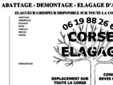 Abattage & Elagage en Corse
