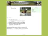 cours-equitation.123.fr
