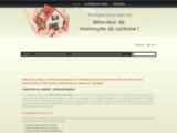 detecteur-de-monoxyde-de-carbone.com