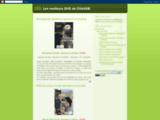 dvd-chasse.blogspot.fr