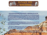 Elevage des burch�res �quitation western