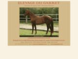 Elevage du Garret, chevaux CSO Midi Pyr�n�es