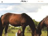 Equitation Ethologique à Firfol (Normandie)