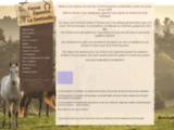 Ferme Equestre La Sentinelle Vosges