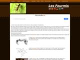 fort.thomas.free.fr