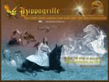 La compagnie de l'Hippogriffe- spectacle equestre