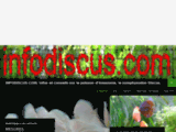 Infodiscus: poissons d
