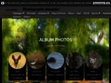 photo, amateur, portraits, humour, sport, animaux, oiseaux, insectes, macro...
