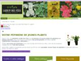 Jardin des Fées - Pépinière de jeunes plants
