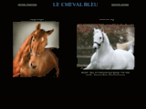 Le Haras de la Reboursi�re & Montaigu