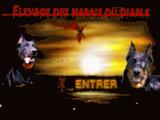 les.marais.du.diable.pagesperso-orange.fr