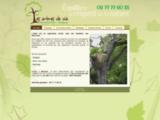 Les arbres de vie - Elagage, soins des arbre