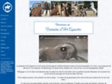 Domaine d'Art Equestre