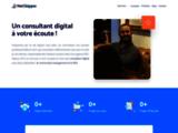 NetSkipper - Consultant Social Media
